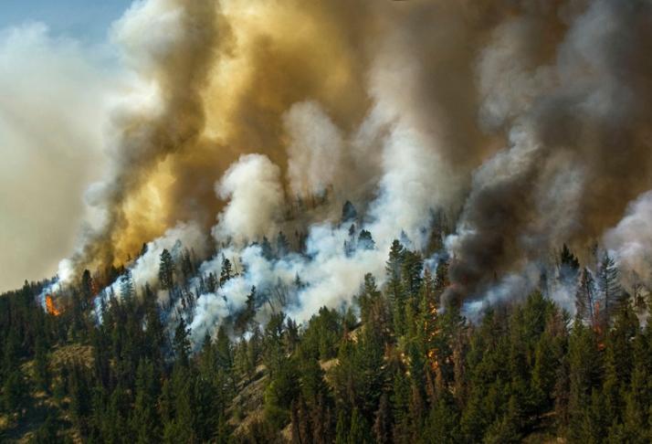 A crise causada pelo homem está afetando o clima, os cientistas provam