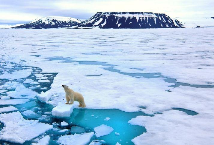 O derretimento do gelo não aumenta os níveis do mar - Mas ainda vai nos impactar