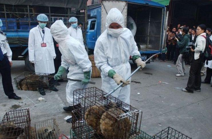 Doença bacteriana contagiosa na China infecta milhares após vazamento em fábrica