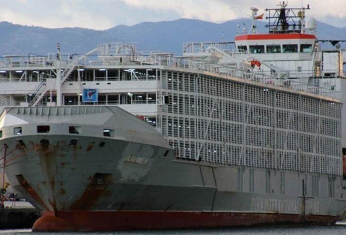 Navio australiano de exportação desapareceu no mar após tufão