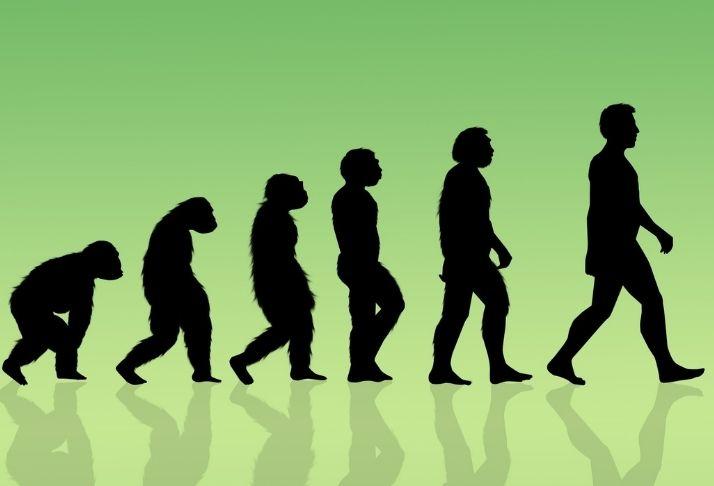 Os seres humanos ainda estão evoluindo? Os cientistas entram em discussão
