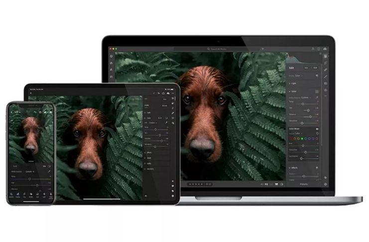 Adobe lança versão Arm para Lightroom, disponível no Windows e macOS