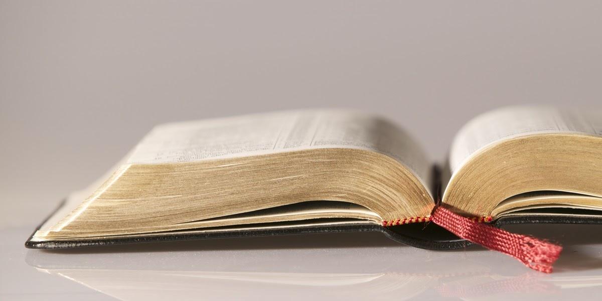 Aprenda como ler a bíblia online